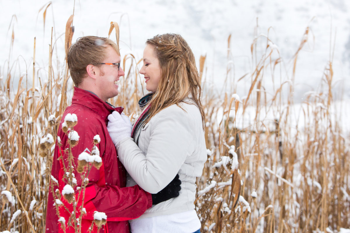 In the snowy bushes for there beautiful engagement shoot