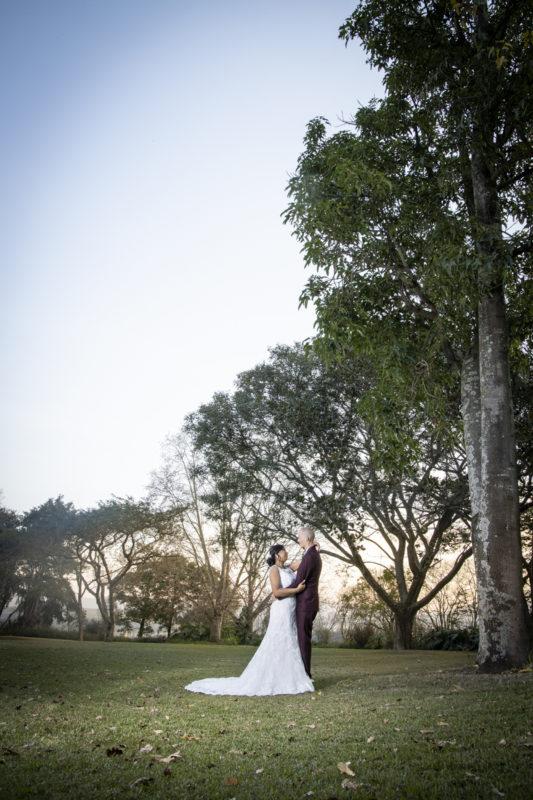 Eden Lassie Wedding trees